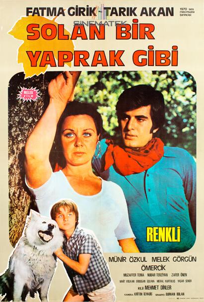 solan_bir_yaprak_gibi_1971