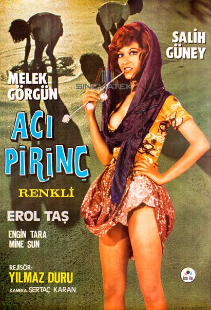 aci_pirinc_1972