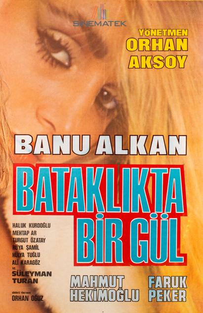 bataklikta_bir_gul_1983