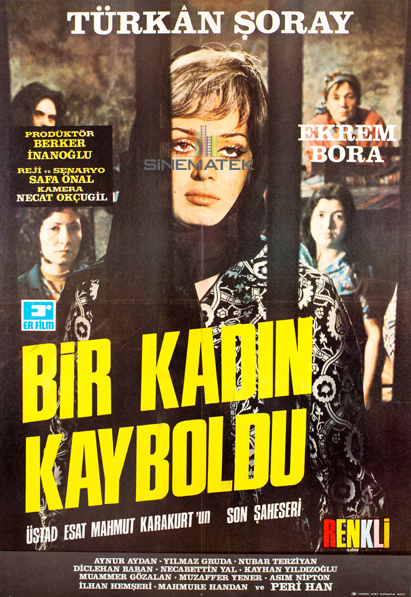 bir_kadin_kayboldu_1971