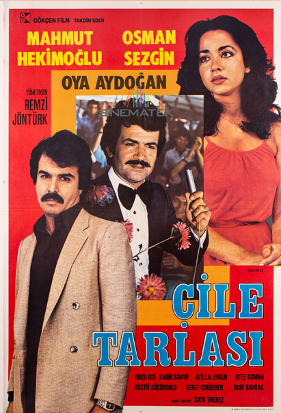 cile_tarlasi_1980