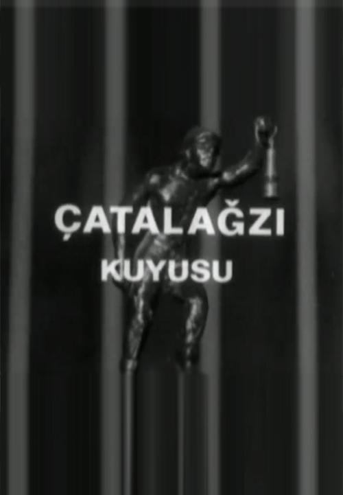 covercatal