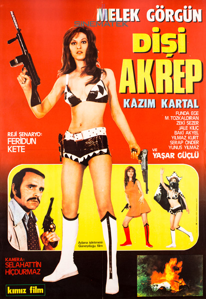 disi_akrep_1972