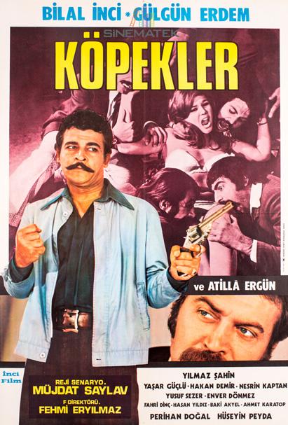 kopekler_1972