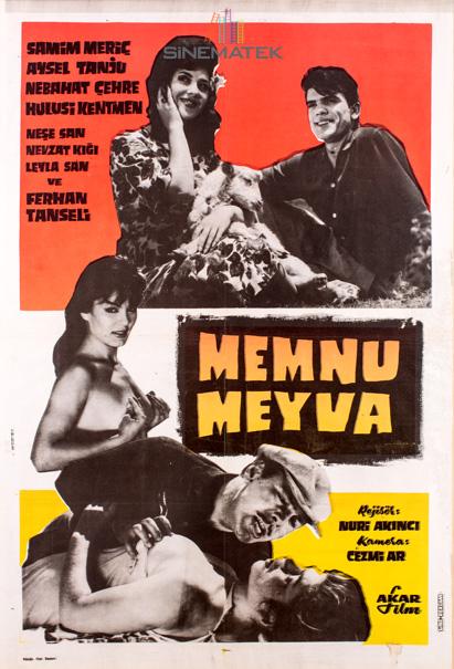 memnu_meyva_1962
